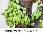 ta  weng plaeng  thai fruit | Shutterstock . vector #712660627