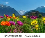 Swiss Alps Valley With Flowers...