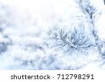 frozen branch of pine covered... | Shutterstock . vector #712798291