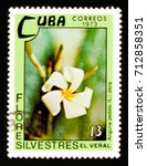 Small photo of MOSCOW, RUSSIA - AUGUST 29, 2017: A stamp printed in Cuba shows Anguria pedata, Wild flowers serie, circa 1973