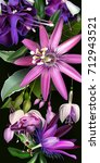 tropical flowers  fuchsia and... | Shutterstock .eps vector #712943521