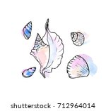 ink  pencil  watercolor shell... | Shutterstock .eps vector #712964014