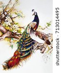 a pair of peacocks on a cherry... | Shutterstock . vector #713014495