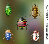 five colorful beetles  green... | Shutterstock .eps vector #713032747