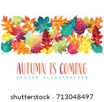 colorful leaves composition.... | Shutterstock .eps vector #713048497