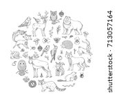 vector set of doodles wild... | Shutterstock .eps vector #713057164