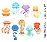colorful jellyfish set ... | Shutterstock .eps vector #713057719