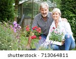 mature couple planting out...   Shutterstock . vector #713064811