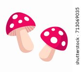 cartoon amanita muscaria  fly... | Shutterstock .eps vector #713069035