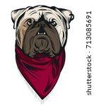 english bulldog portrait. can... | Shutterstock .eps vector #713085691