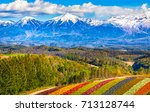 mountain covered with snow... | Shutterstock . vector #713128744