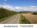 a wooded hillside with a golden ... | Shutterstock . vector #713213395
