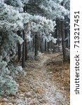 Path Way In Hoar Frost Winter...