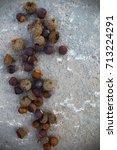 oak acorns on the ground. | Shutterstock . vector #713224291