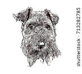 hand drawn vector illustration... | Shutterstock .eps vector #713282785