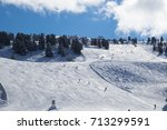 view of alps in zillertal... | Shutterstock . vector #713299591