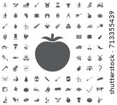 tomato icon on the white... | Shutterstock .eps vector #713355439