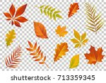autumn falling leaves isolated... | Shutterstock .eps vector #713359345