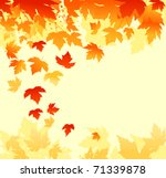 autumn colorful leaves... | Shutterstock . vector #71339878