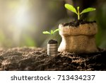 coins stacked on fertile ground.... | Shutterstock . vector #713434237