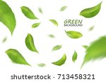 blurred fresh flying green... | Shutterstock .eps vector #713458321