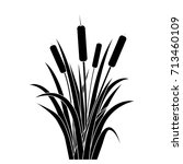 Silhouette Black Water Reed...