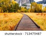 meadow with boardwalk in...   Shutterstock . vector #713475487
