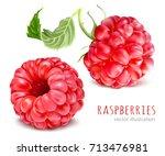 raspberries. vector...   Shutterstock .eps vector #713476981
