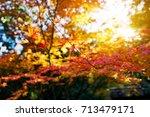 japan autumn season  wakayama...   Shutterstock . vector #713479171