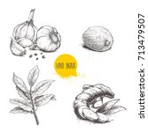 hand drawn sketch spices set.... | Shutterstock .eps vector #713479507