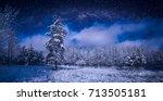 Beautiful Winter Night Starry...