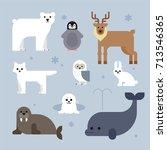 north pole animals vector... | Shutterstock .eps vector #713546365