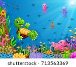 cartoon turtle and octopus... | Shutterstock . vector #713563369