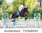 young rider girl on bay horse... | Shutterstock . vector #713568334