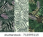 set of three seamless floral... | Shutterstock .eps vector #713595115
