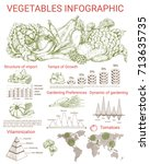 vegetable infographics design.... | Shutterstock .eps vector #713635735