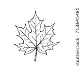 hand drawn maple leaf outline.... | Shutterstock .eps vector #713645485