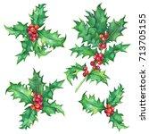 set holly twig  ilex  christ's... | Shutterstock . vector #713705155