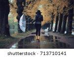 autumn landscape city woman... | Shutterstock . vector #713710141