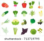 fresh vegetables and herbs... | Shutterstock .eps vector #713719795