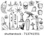 halloween collection... | Shutterstock .eps vector #713741551