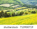 Patch Farm Field Hills Of...