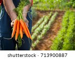 farmer holding fresh picked... | Shutterstock . vector #713900887