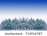 Frozen Winter Forest With Snow...