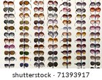 rack with glasses and... | Shutterstock . vector #71393917