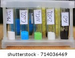 inorganic chemistry. salts in...   Shutterstock . vector #714036469