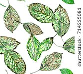 watercolor leaves seamless... | Shutterstock . vector #714235081