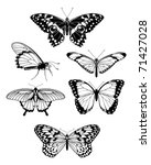 A set of beautiful stylised butterfly outline silhouettes - stock vector