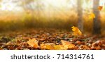 beautiful autumn landscape with ... | Shutterstock . vector #714314761