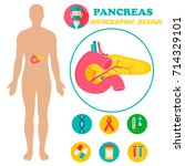 poster with image of human body ...   Shutterstock .eps vector #714329101